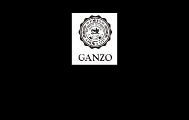 ガンゾ買取価格・相場について「エコスタイル」