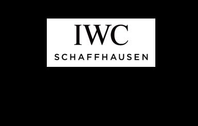 IWC買取価格・相場について「エコスタイル」