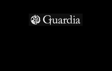 ガルディア買取価格・相場について「エコスタイル」