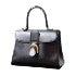 Delvaux Le Brillant MM ブリヨン ボックスカーフ ハンドバッグ 美品の買取強化例です。